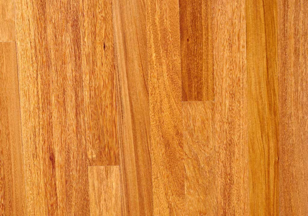 brazilian teak exotic wood image