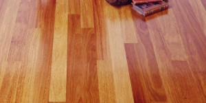 brazilian teak flooring exotic wood image