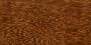 iroko exotic wood image